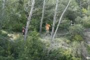 jurassic-trail-2013-473