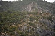 3-ambiance-trail-du-ventoux-photo-jmk-consult