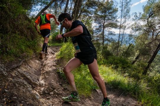 trail-limaces