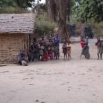 SEMI CONGO 5