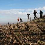 Trail des Cabornis
