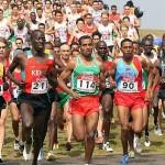 cross country (Photo : IAAF)