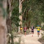 2015 TNF 100 Australia de g à d Longfei Yan François D'Haene et Dylan Bowman photo Damien Rosso www.droz-photo.com