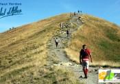 Trail du Val d'Allos : résultats
