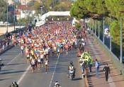 Marathon International Toulouse Métropole 2015
