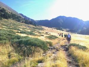 Trail du Canigou
