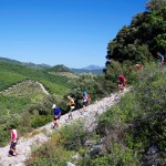 Trail de Beaumes de Venise (cp Akunamatata)