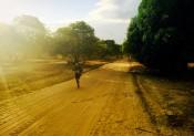 Racing Madagascar pour du Trail Travel !