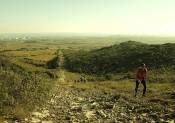 Les Trail des Sangliers ouvre le TTN à Balaruc !