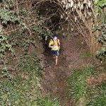 Nicolas Miquel-Forest Trail