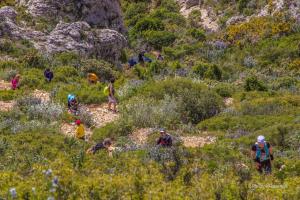 Trail de Mimet 2014