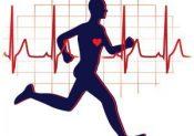 Comment calculer sa fréquence cardiaque maximale (FCM)