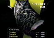 Forest Trail : les inscriptions pour l'édition 2017 sont lancées !