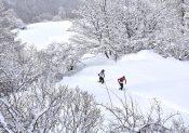 800 trailers au départ de l'Ubaye Snow Trail Salomon