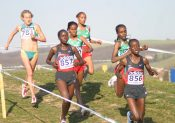 France de cross-country : Saint-Galmier dans les starts !