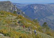 Le Grand Trail Stevenson, 7ème édition