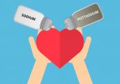 Sodium et potassium pour réguler l'eau dans le corps