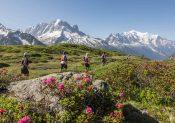 La Golden Trail National Séries revient en France et Belgique en 2020